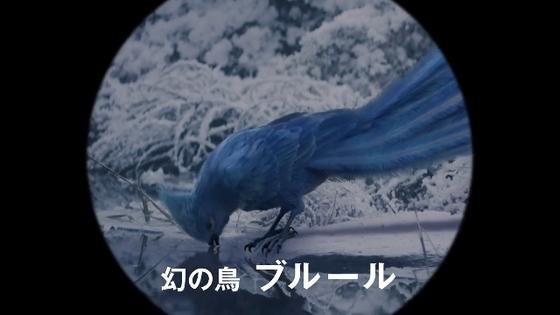 aka-midori02.JPG