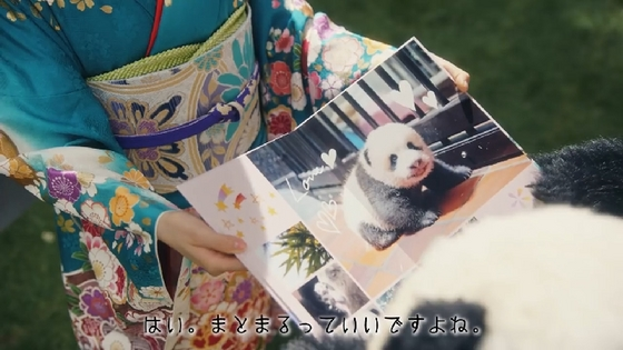 fujifilm10.JPG