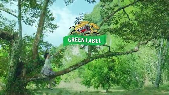 green21.JPG