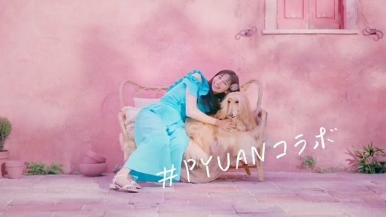 pyuan13.JPG