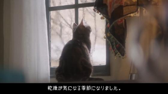 sekkisei08.JPG